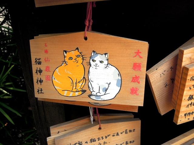 愛猫家の皆さんへのプレゼント!