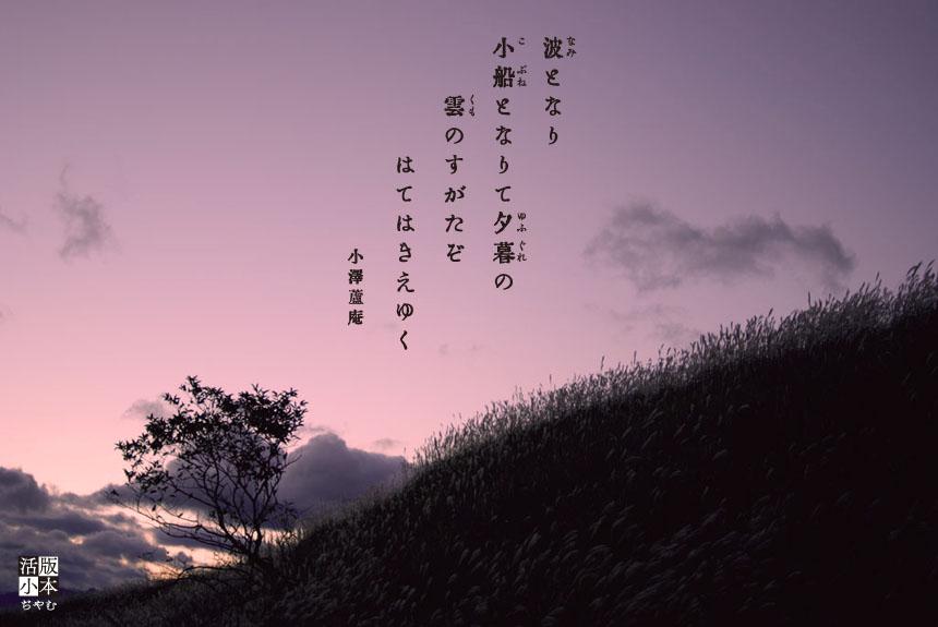 露庵[1]