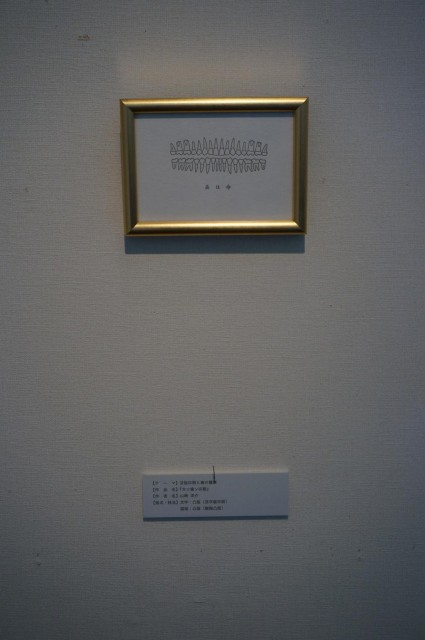 DSC00333s