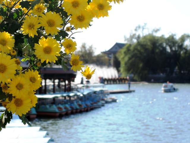 北京爽秋 北海公園