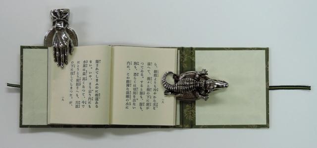DSCN9632