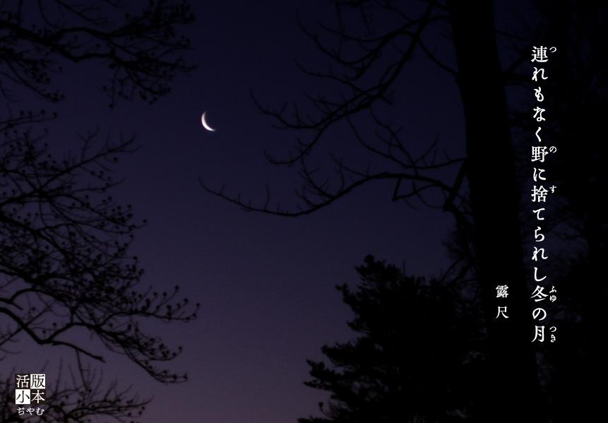 冬の月[1]