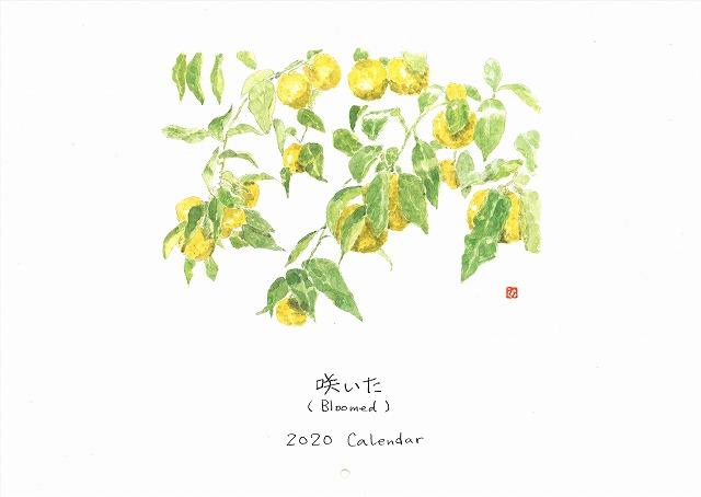 20191217154727_00012 - コピー
