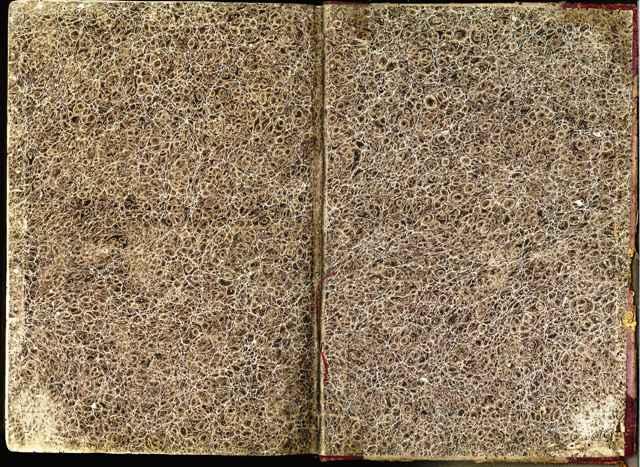 薩摩辞書うしろ見返しマーブル紙